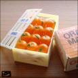 20081012|オレンジが12個!箱入りヴィンテージマグネット