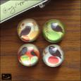 20091229|キョロ目クロフクロウのガラス玉マグネット